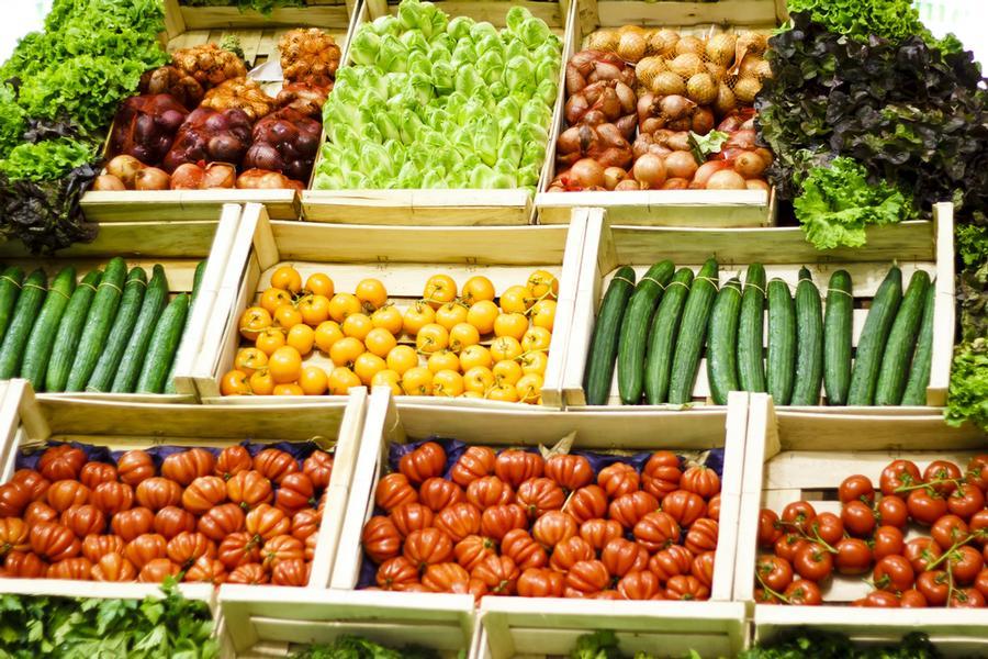 Food stuff trading license in Dubai