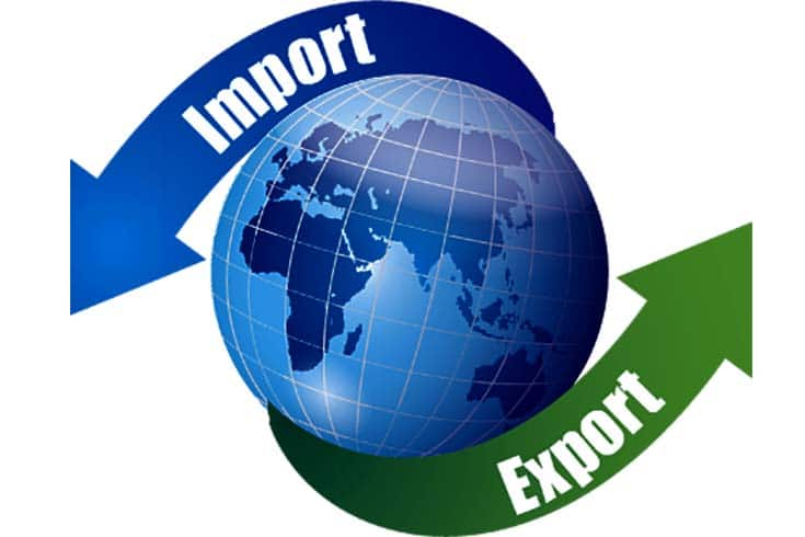 Dubai import export business